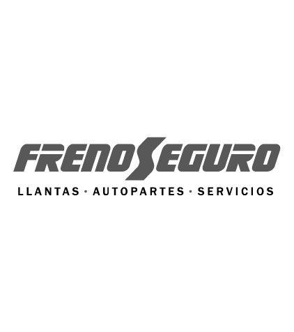 FrenoSeguro - equipos